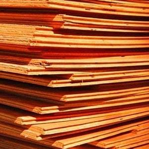 plywood-500x500-500x500-min